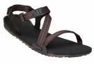 Xero Shoes Womens Z-Trail Multi Brown